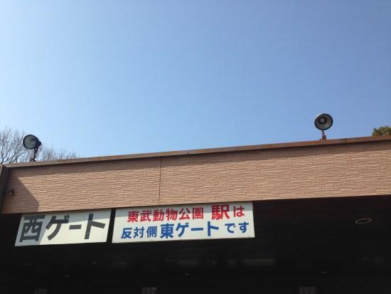 IMG_7444