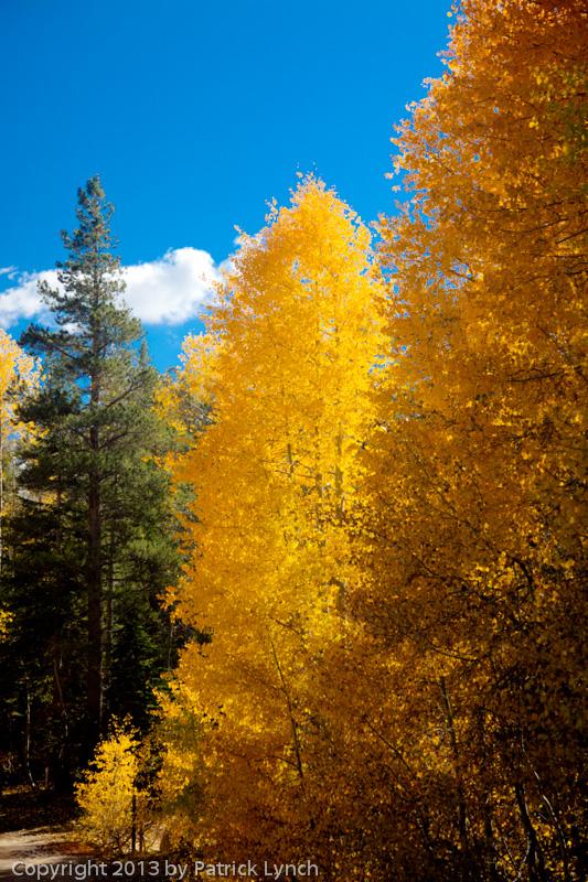 PL20131010-Fall-Colors-0475_6_7