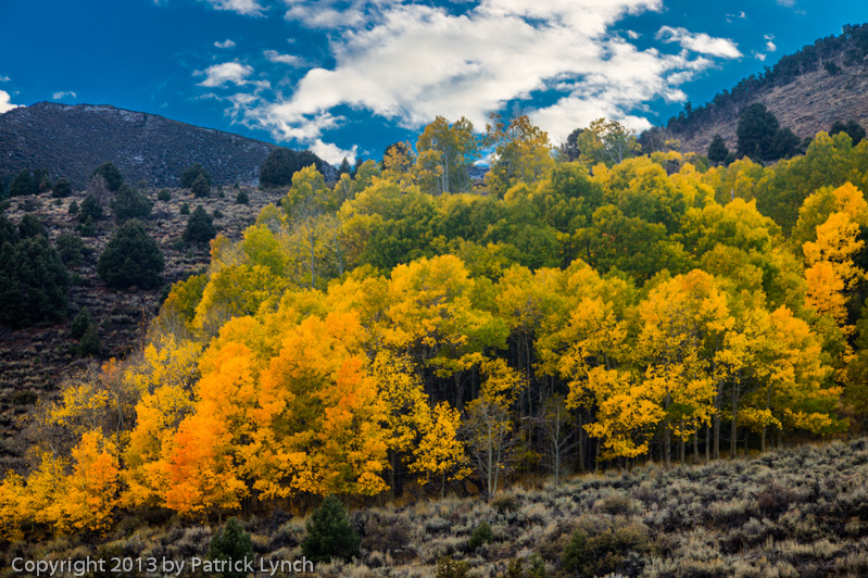 PL20131011-Fall-Colors-0820_1_2