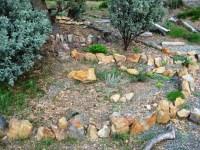 The rock garden with a gravel path   Sierra Foothill Garden