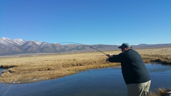 Mammoth lakes fly fishing report upper owens river 12 for Bishop ca fishing report