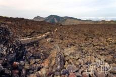 Вулканическая порода после извержения вулкана Чиньеро