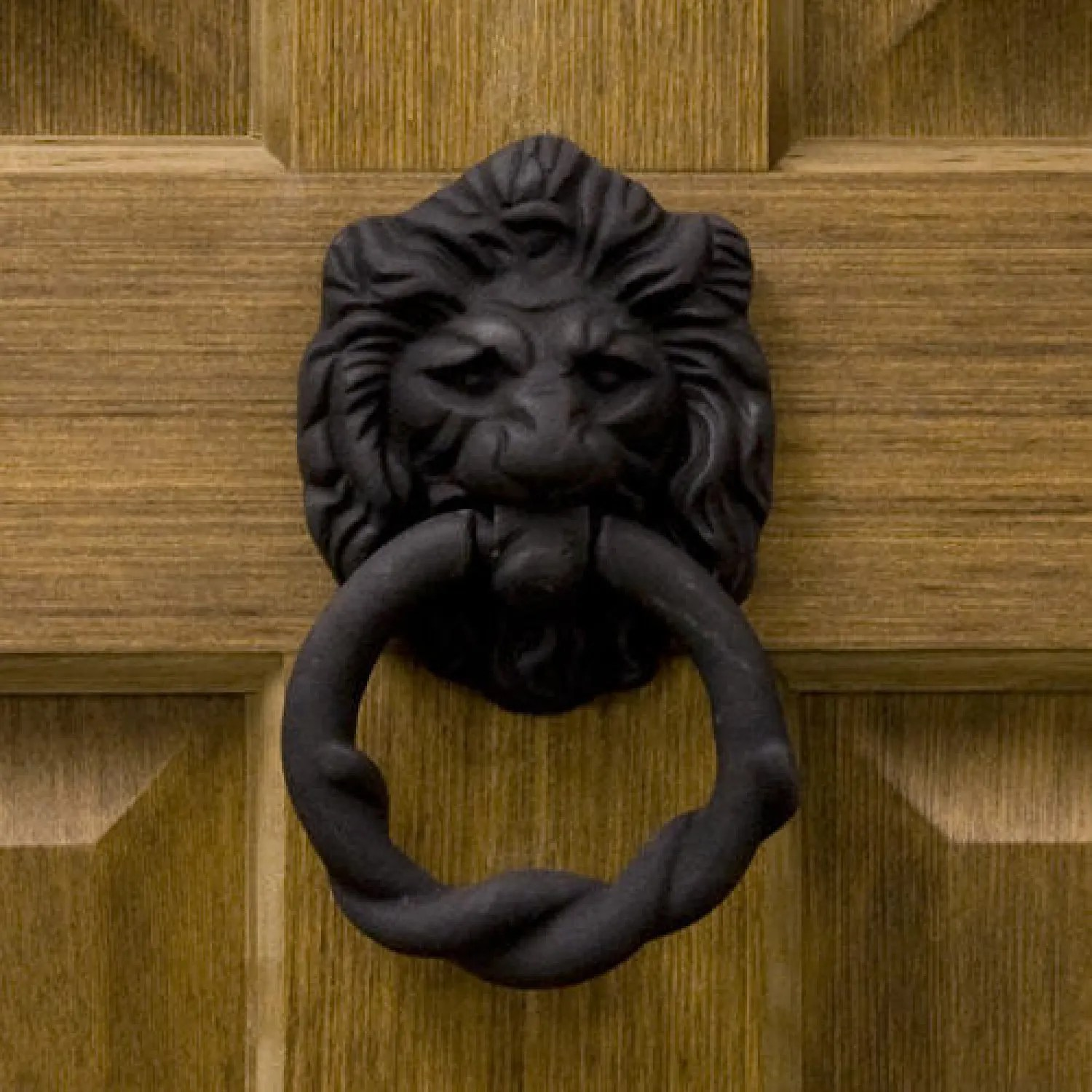 Rustic Door Knockers Rustic Iron Lion Door Knocker Hardware