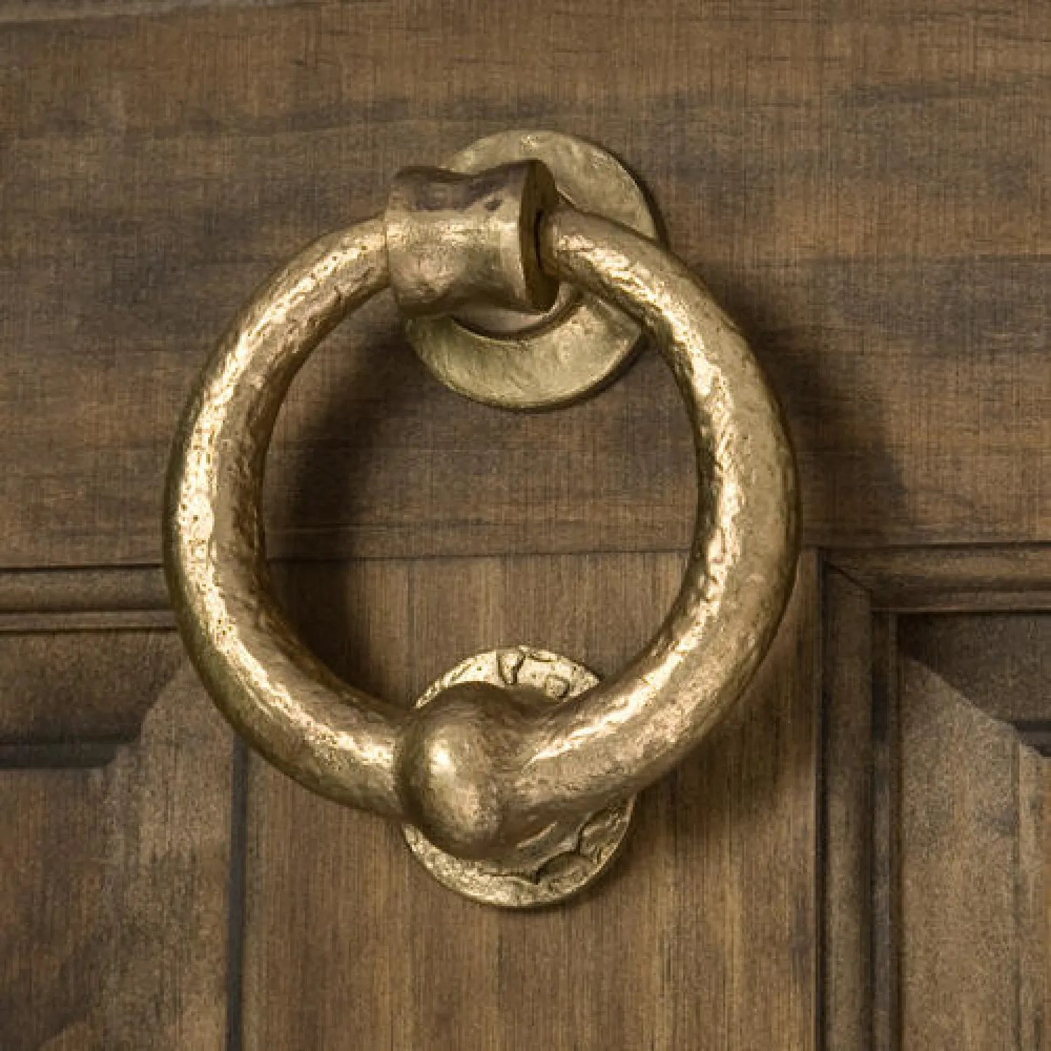 Door Nocker Solid Bronze Deluxe Ring Door Knocker Living Bronze