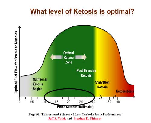 How to Read Ketosis Strips