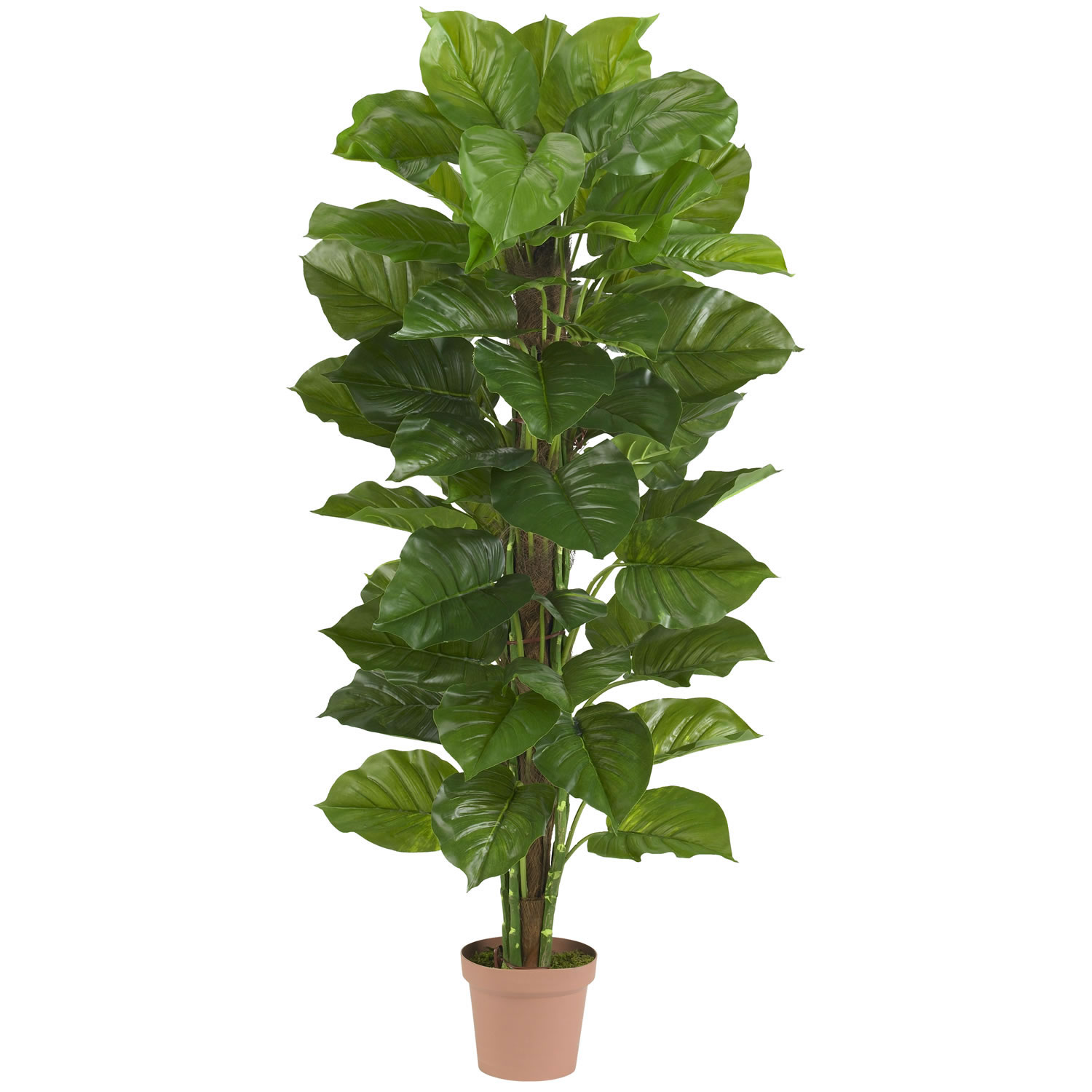 Large Leaf Houseplant 63 Quot Large Leaf Philodendron Silk Plant Real Touch Silk