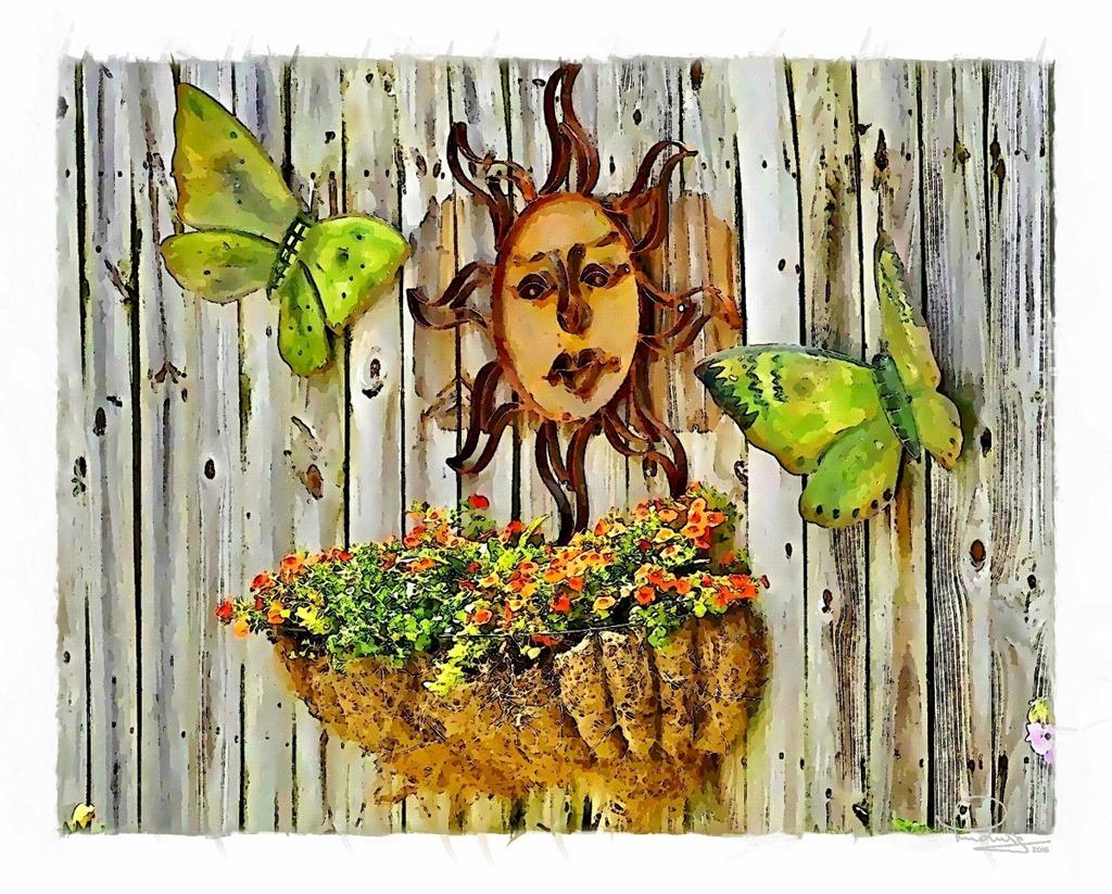 Sun and Butterflies