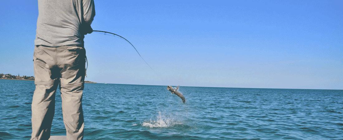 slider-tarpon-jumping1