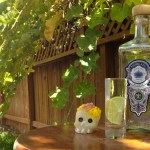 Piedra Azul Tequila