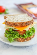 oven-roasted-turkey-and-cheese-sandwich