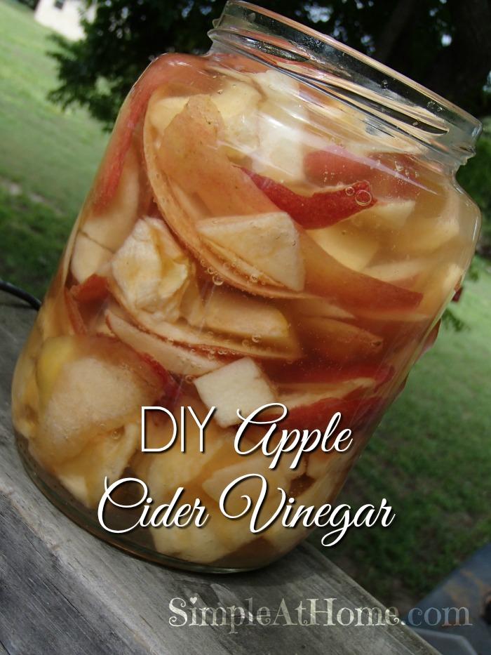 how to make apple cider vinegar at home pdf