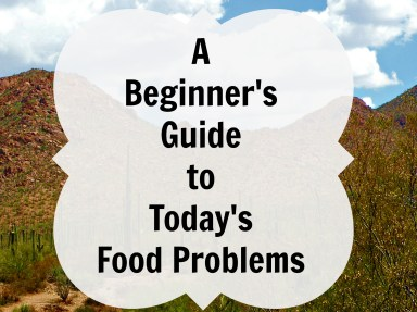 beginner's guide to food problems