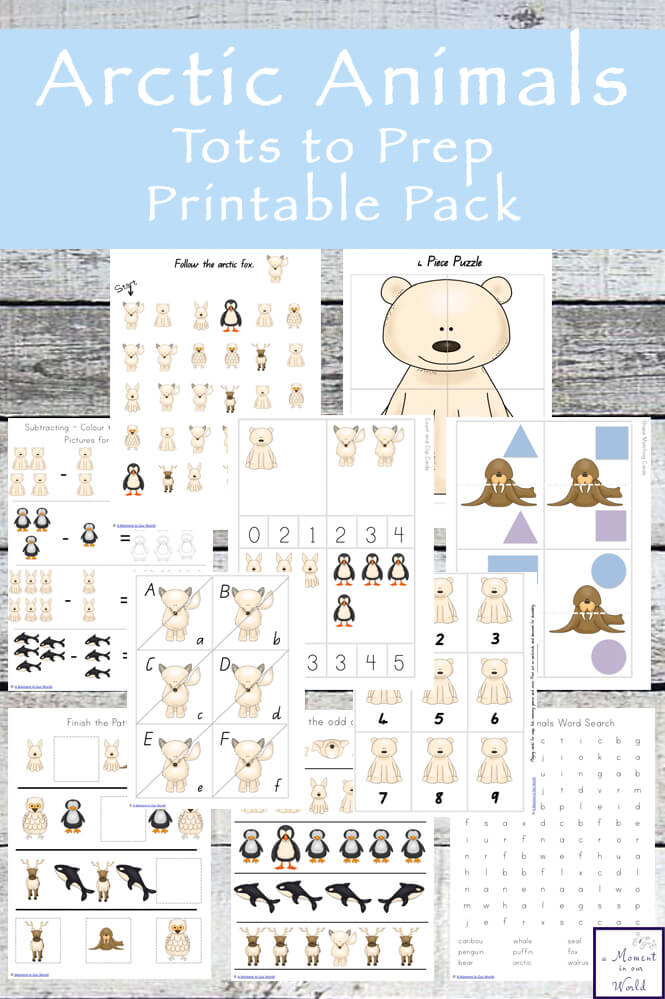 Arctic Animals Tots to Prep Printable Pack - Simple Living Creative