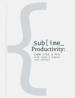 sublime productivity thumb Craziest Entrepreneur Challenge: Can 3 Devs Make $100 Each In 24 Hours? (1 of 3)