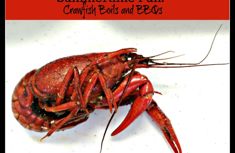 Summertime Fun – Crawfish Boils and BBQs
