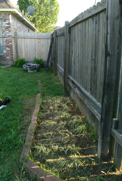 How i made a garden from recycled items simplestepsforlivinglife - How to build an alley out of reused bricks ...