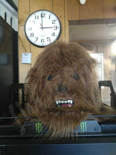 Monster Mart in Fouke, Arkansas is a great roadside stop!