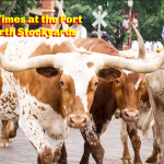 Fun Times at the Fort Worth Stockyards