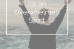 10 Verses for an Overwhelmed Spirit