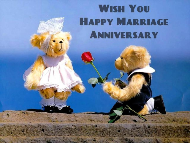 teddy images of anniversary
