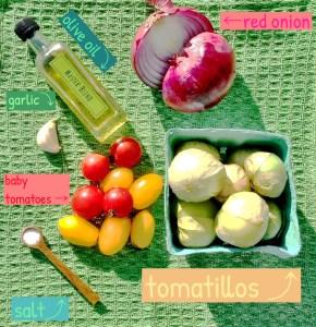 tomatillo salsa ingredients