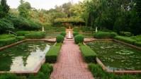 November marks the First Singapore Botanic Gardens ...