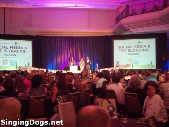 blogpaws 2013