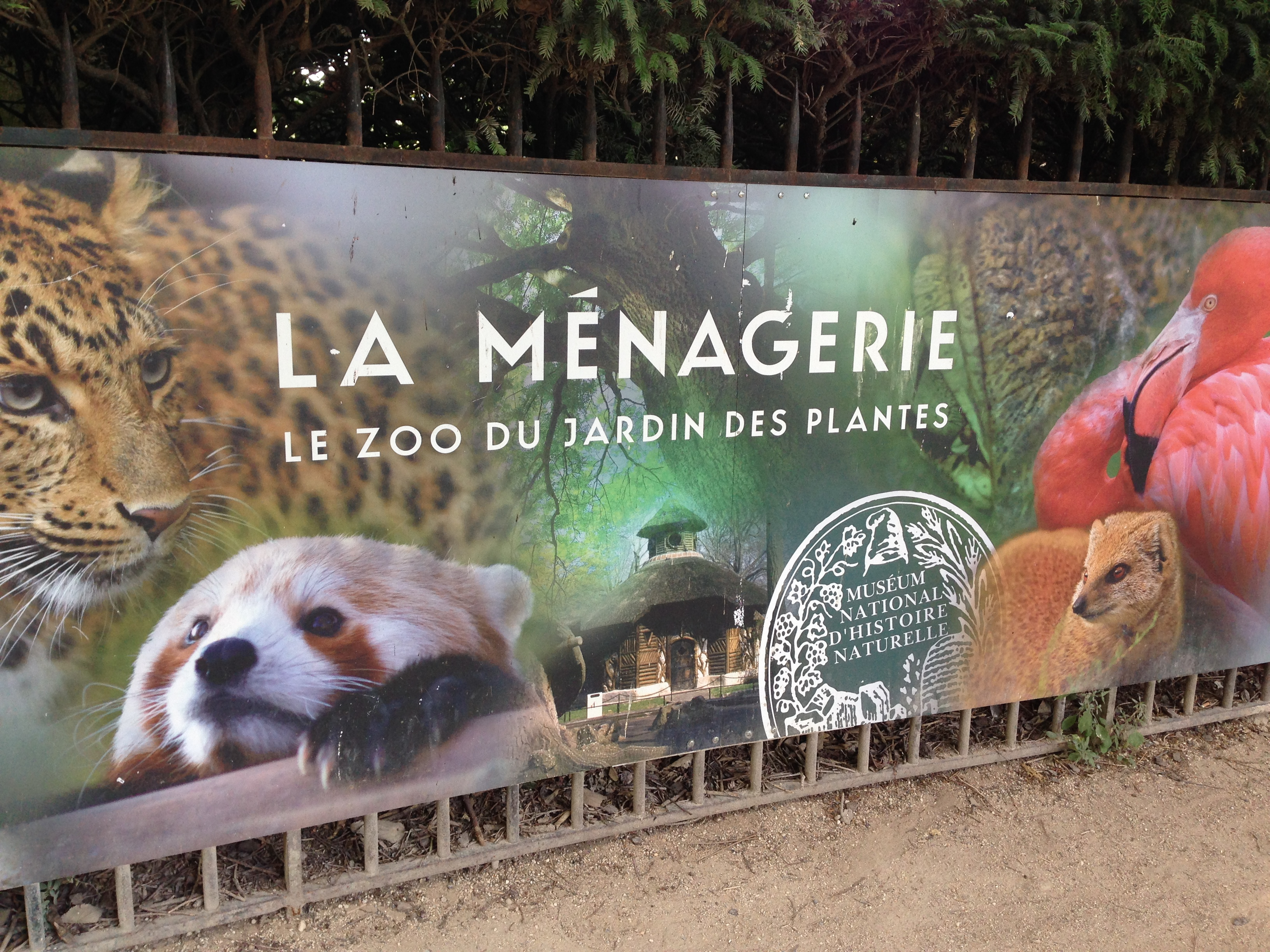 But Jardin Paris Day By Day A Day In The Jardin Des Plantes
