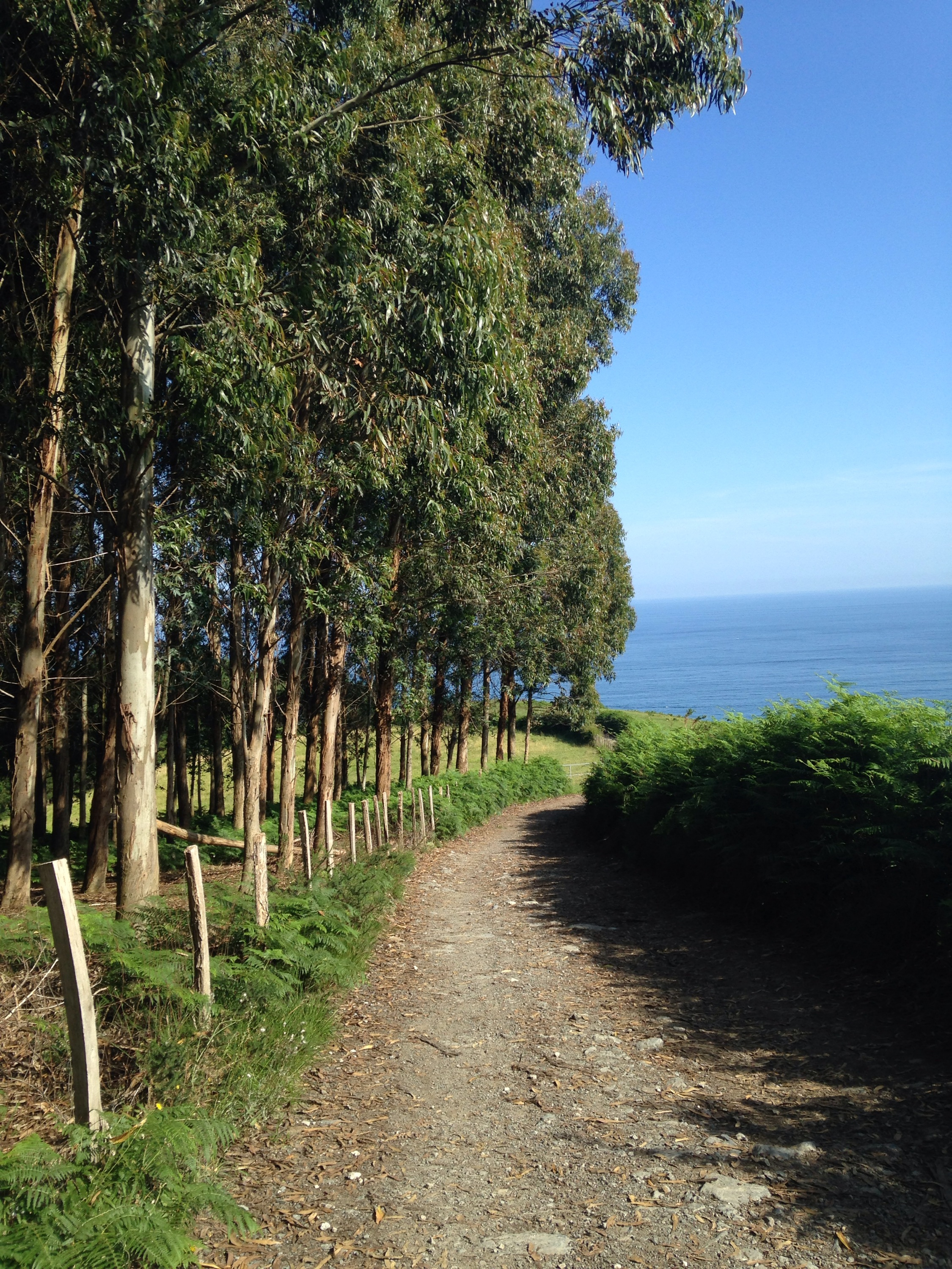 Camino Del Norte July 2017 Other Camino Routes Nadine Walks