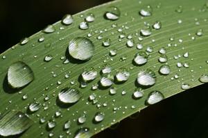 water-crisis-looming-tech-help-7