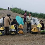 Where the subversion starts; a roadside market in North Korea | via Japan Focus