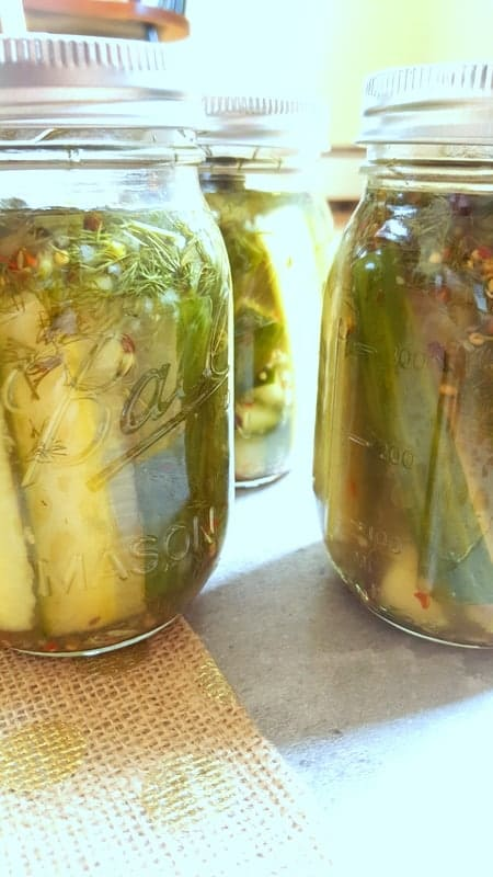Spicy Garlic Dill Pickles | Sip & Spice