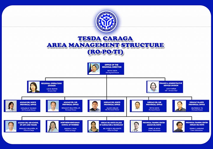 Organizational structure of google College paper Sample
