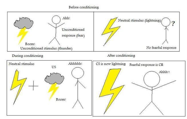 61 Classical Conditioning - YAS Psych Txtbk - examples of classical conditioning