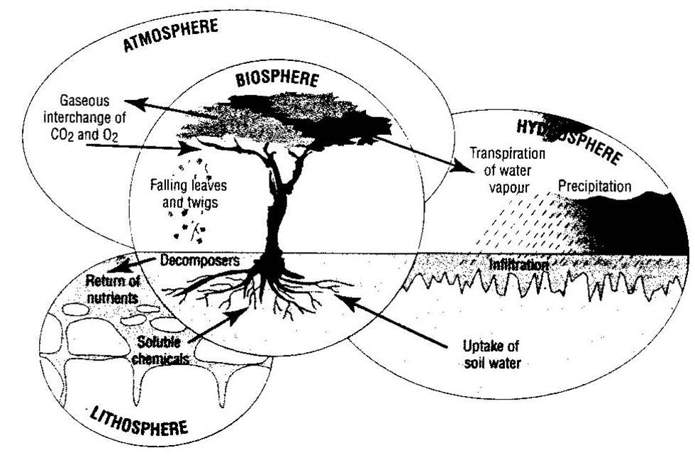 diagram of the hydrosphere
