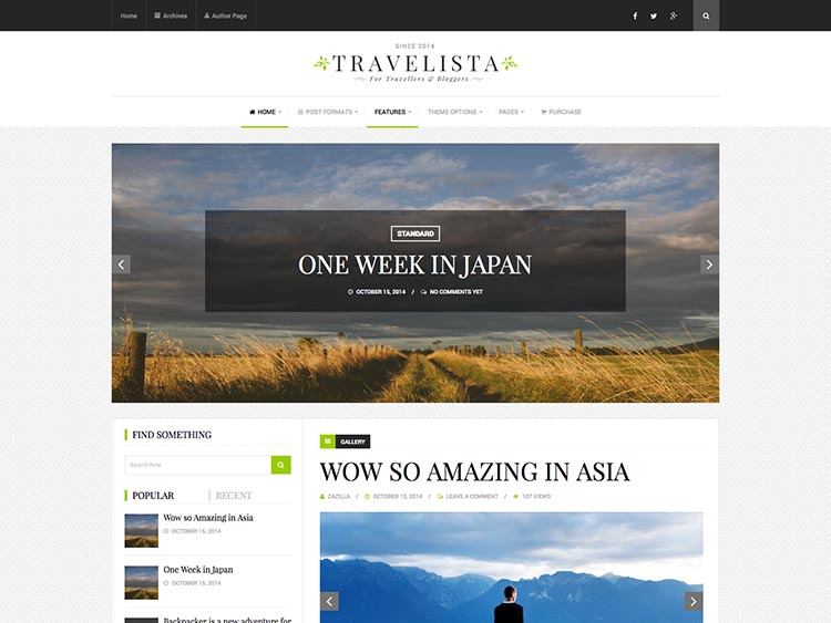 20+ Best WordPress Travel Blog Themes for 2019 - Siteturner