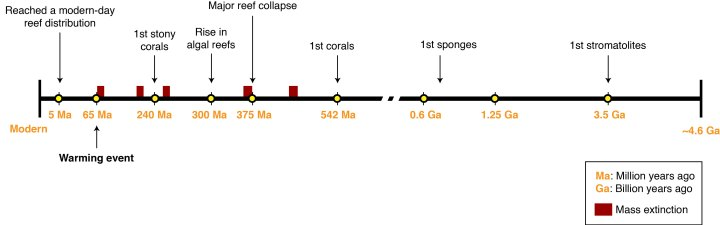 Figure 2: Timeline of coral reef evolution, starting with Earth's formation (right) and ending in the modern (left). Reef evolution is punctuated by five global mass extinction events.