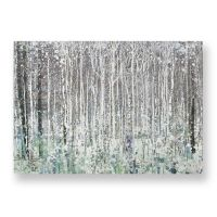 Watercolour Woods Printed Canvas | Canvas Prints | Graham ...