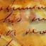 Marcene Callicoat