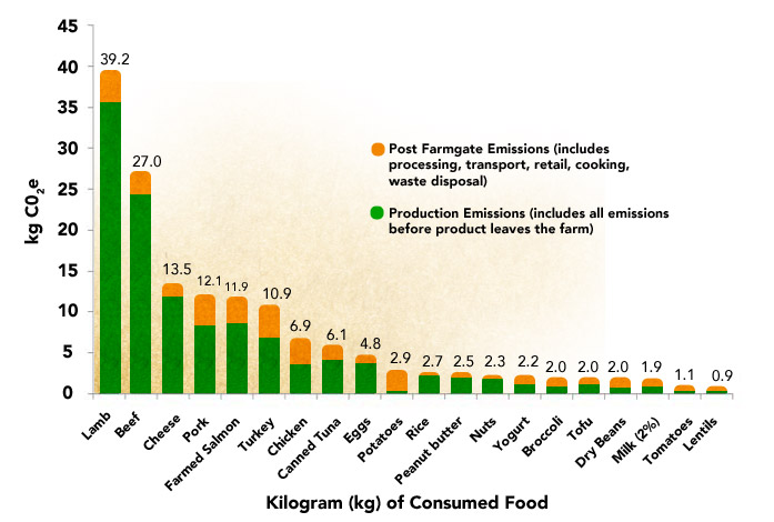 How much does animal agriculture and eating meat contribute to