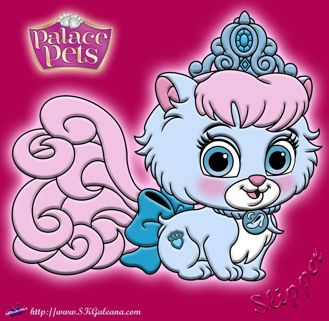 Disney Princess Palace Pet Coloring Page Of Slipper