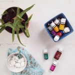 An Intro to Oils and a Giveaway! [Guest Post]