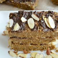 Vegan Almond Protein Bars