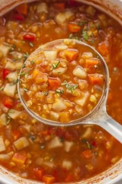 Mesmerizing Stew Cookbook Red Vs Brown Vs Green Lentils Slow Cooker Rosemary Lentil Stew Soup Vs Stew Vs Chili Soup