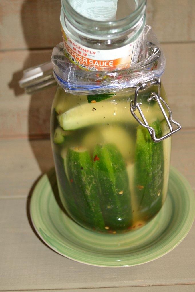 Probiotic Pickles Recipe
