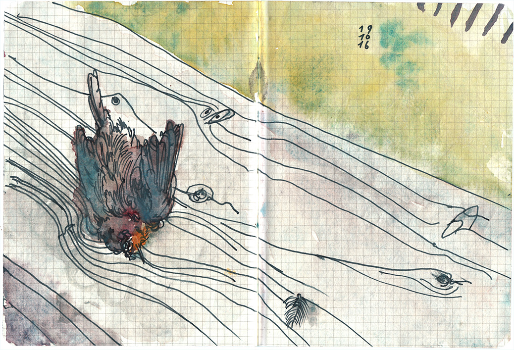 161019_katzenbeute-copy