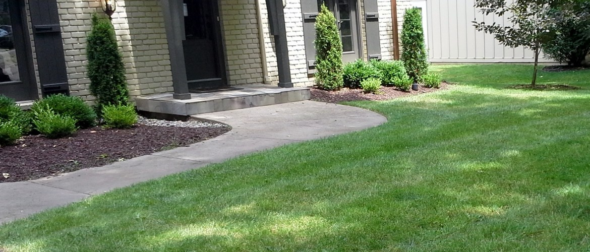 Lawn care in kansas city sk lawn care lawn care for Professional landscaping service