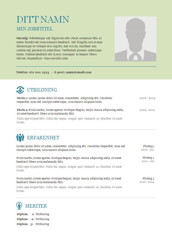 cv openoffice en pdf