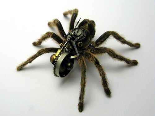 Tarantula, цена $1250