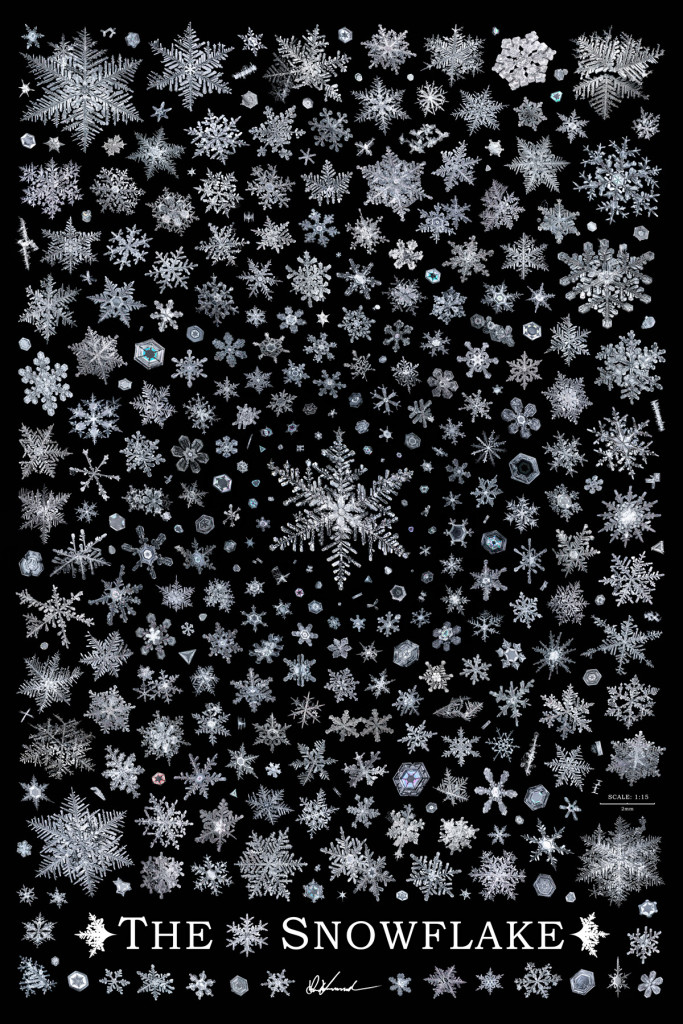 Real Snowflakes Falling Wallpaper The Snowflake Poster Print Sky Crystals